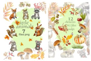Print on Demand: Forest Animals Baby Watercolor Clipart. Graphic Illustrations By Marine Universe 3