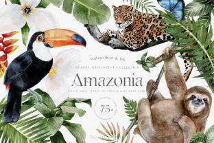 Print on Demand: Modern Watercolor Rainforest Collection Graphic Illustrations By Busy May Studio