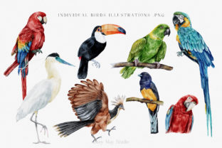 Modern Watercolor Rainforest Collection - 4