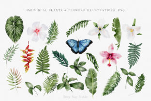 Print on Demand: Modern Watercolor Rainforest Collection Graphic Illustrations By Busy May Studio 5