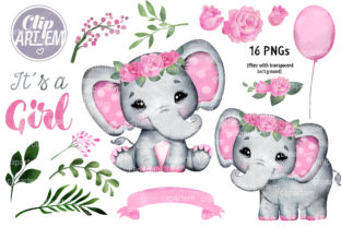 Print on Demand: Pink Roses Girl Elephant 16 PNG Bundle Graphic Illustrations By clipArtem