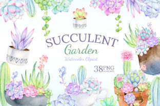 Watercolor Succulent Clipart Mix & Match Graphic Illustrations By SipkaDesigns 1