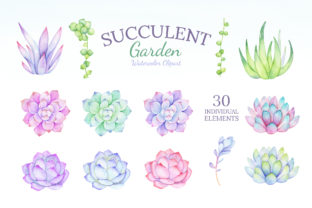 Watercolor Succulent Clipart Mix & Match Graphic Illustrations By SipkaDesigns 2