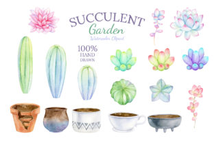 Watercolor Succulent Clipart Mix & Match Graphic Illustrations By SipkaDesigns 3