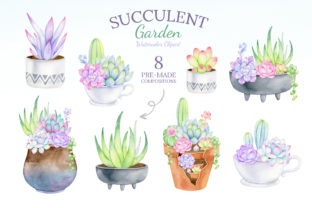Watercolor Succulent Clipart Mix & Match Graphic Illustrations By SipkaDesigns 4