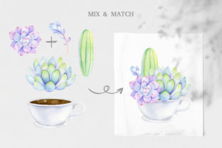 Watercolor Succulent Clipart Mix & Match Graphic Illustrations By SipkaDesigns 5