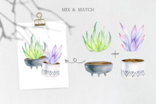 Watercolor Succulent Clipart Mix & Match Graphic Illustrations By SipkaDesigns 6