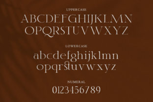 Print on Demand: Classy Serif Font By TypeFactory 2