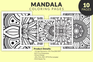 Print on Demand: Adult Mandala Coloring Pages for KDP Graphic KDP Interiors By TSDesign