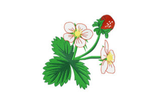Print on Demand: Wild Strawberry Food & Dining Embroidery Design By EmbArt