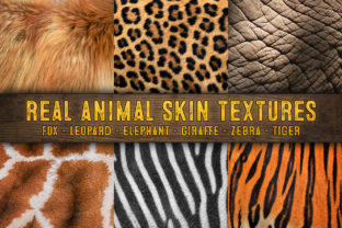 Print on Demand: Animal Skin - Real Animal Skin Textures Graphic Textures By julienstore