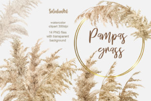 Pampas Grass Watercolor Clipart Graphic Illustrations By SolodunArt