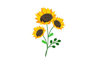 Sunflowers Floral Graphic Illustrations By fadhiesstudio