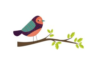 Exotic Bird Collection Graphic Illustrations By zia studio
