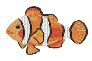 Clownfish Fish & Shells Embroidery Design By Canada Crafts Studio