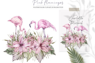 Print on Demand: Watercolor Pink Flamingo Sublimation Graphic Illustrations By Tiana Geo
