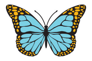 Print on Demand: Butterfly in Color, Blue Yellow Graphic Illustrations By Wozart