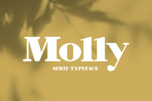 Print on Demand: Molly Serif Font By Koson.graphic