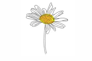 Daisy Single Flowers & Plants Embroidery Design By LizaEmbroidery