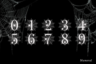 Print on Demand: Spooky Spider Monogram Decorative Font By fontbrand19 8