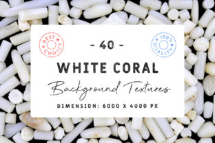 40 White Coral Background Textures Bundle Graphic Textures By Textures