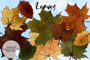 Hello Autumn Clipart, Leaves and Pumpkins Graphic Illustrations By Arte de Catrin 6