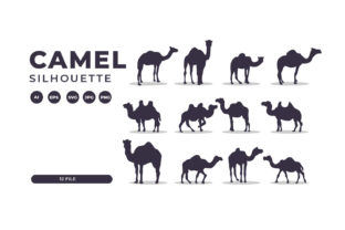 Silhouettes of Camel Collection Graphic Illustrations By Role Graphic