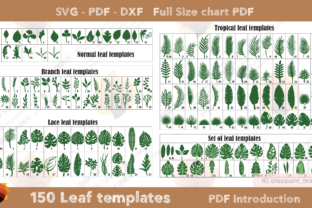 Print on Demand: 150 Leaf Templates Graphic 3D Flowers By lasquare.info