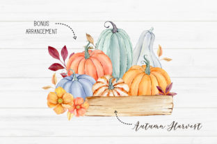 Watercolor Autumn Pumpkin Clipart Graphic Illustrations By SipkaDesigns 3