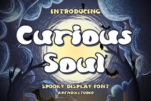 Print on Demand: Curious Soul Display Font By Arendxstudio