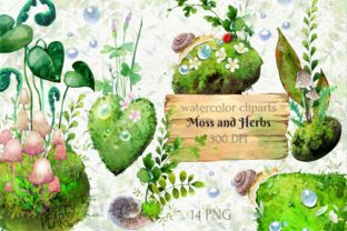 Watercolor Cliparts of Forest Moss, Herb - 1