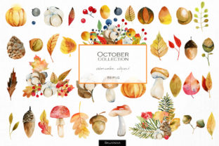 October. Watercolor Autumn Clipart. Graphic Illustrations By HappyWatercolorShop