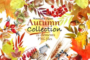 Print on Demand: Autumn Leaves Watercolor Clipart, Fall Graphic Illustrations By Marine Universe