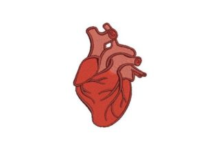 Anatomically Correct Heart Wellness Embroidery Design By Embroidery Designs