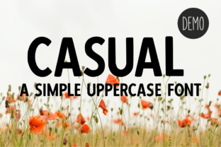 Print on Demand: Casual Display Font By designavmad