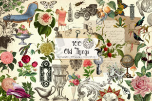 Print on Demand: 100 Old Things Graphic Illustrations By Digital Curio