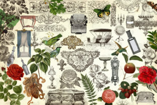 Print on Demand: 100 Old Things Graphic Illustrations By Digital Curio 2