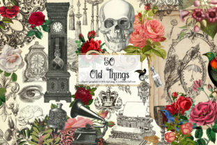Print on Demand: 50 Old Things Graphic Illustrations By Digital Curio