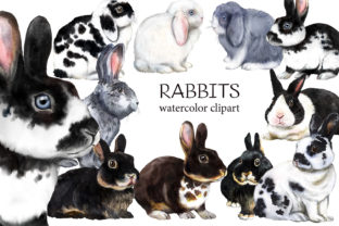 Rabbits Watercolor Clipart. Farm Animals Graphic Add-ons By EvArtPrint