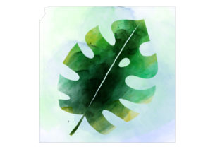 Watercolor Monstera Deliciosa Nature & Outdoors Craft Cut File By Creative Fabrica Crafts