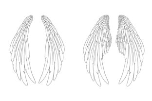 Print on Demand: 20 Feather Angel Wings Illustrustrations Graphic Illustrations By squeebcreative 4