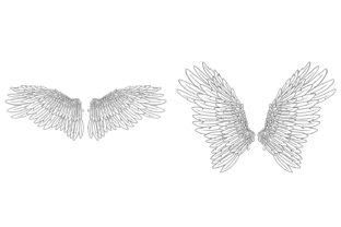 Print on Demand: 20 Feather Angel Wings Illustrustrations Graphic Illustrations By squeebcreative 7