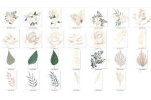 Print on Demand: Boho White Rose Clipart Graphic Illustrations By Digital Curio 3