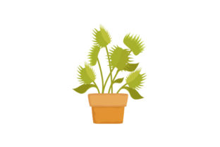 Venus Flytrap Clipart Nature & Outdoors Craft Cut File By Creative Fabrica Crafts