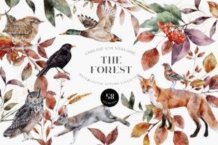 Print on Demand: Autumn Forest Animals Watercolor PNG Graphic Illustrations By Busy May Studio