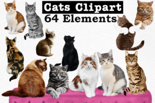 Print on Demand: Cats Clipart Cat Breeds Cat Bundle Graphic Illustrations By LeCoqDesign