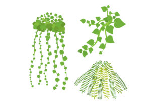 Hanging Plants Designs & Drawings Craft Cut File By Creative Fabrica Crafts