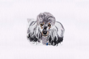 Poodle Face Dogs Embroidery Design By StitchersCorp