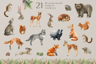 Forest Animals and Herbs Watercolor Set - 2
