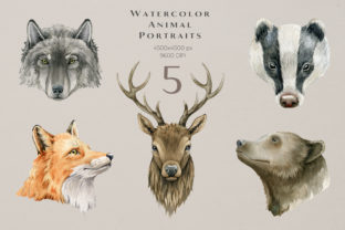Forest Animals and Herbs Watercolor Set - 3